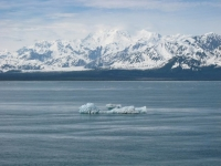 calved-glaciers-floating-by