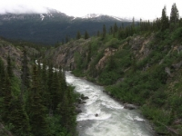 wider-view-from-yukon-suspension-bridge