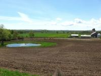 farmland-1