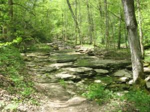 path-to-falls