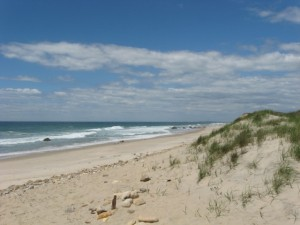 mv-martha's vineyard beach 2