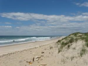 mv-martha's vineyard beach 2